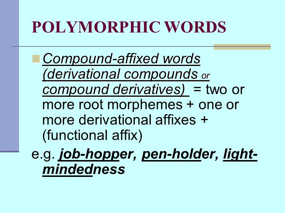 POLYMORPHIC WORDS