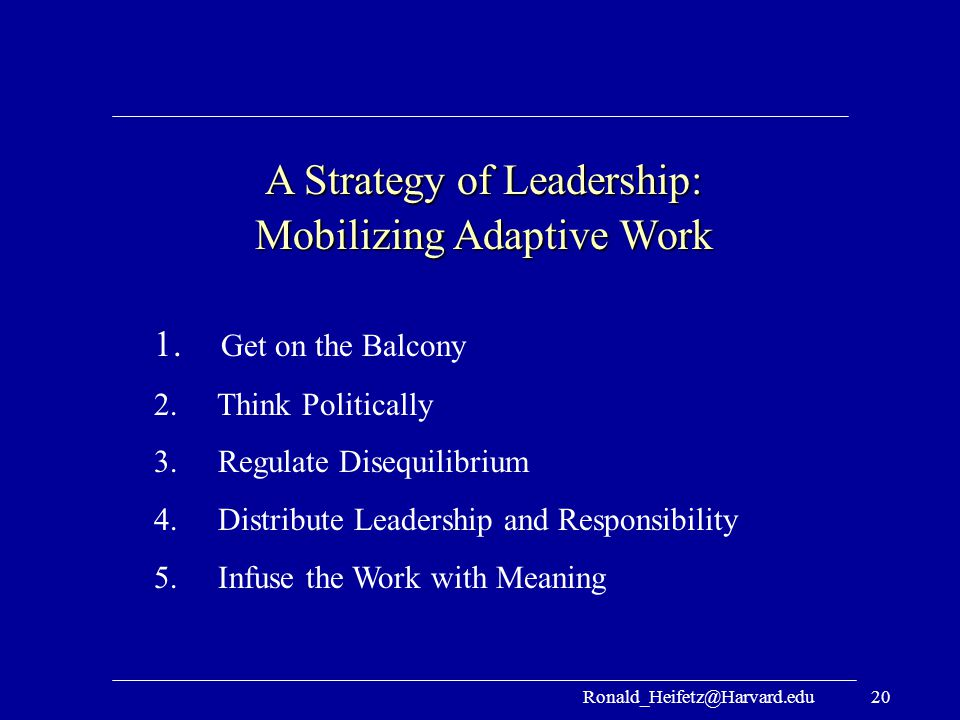 A Strategy of Leadership: Mobilizing Adaptive Work