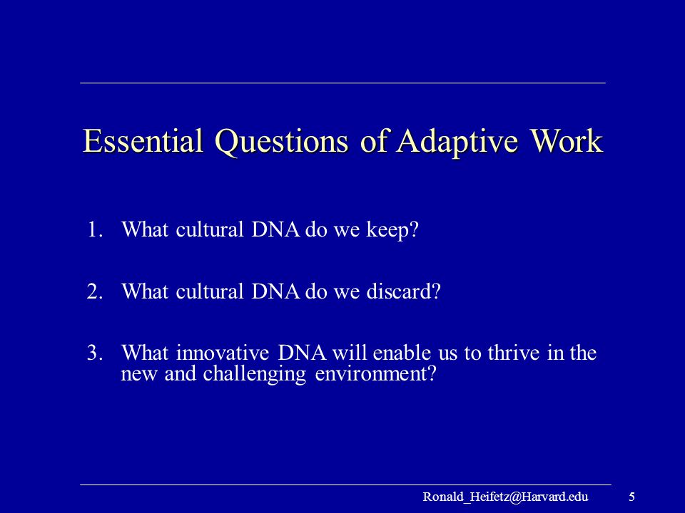 Essential Questions of Adaptive Work