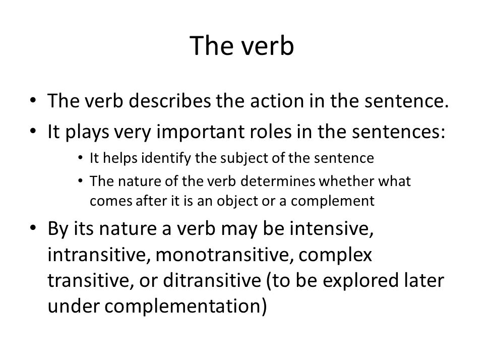 The verb The verb describes the action in the sentence.