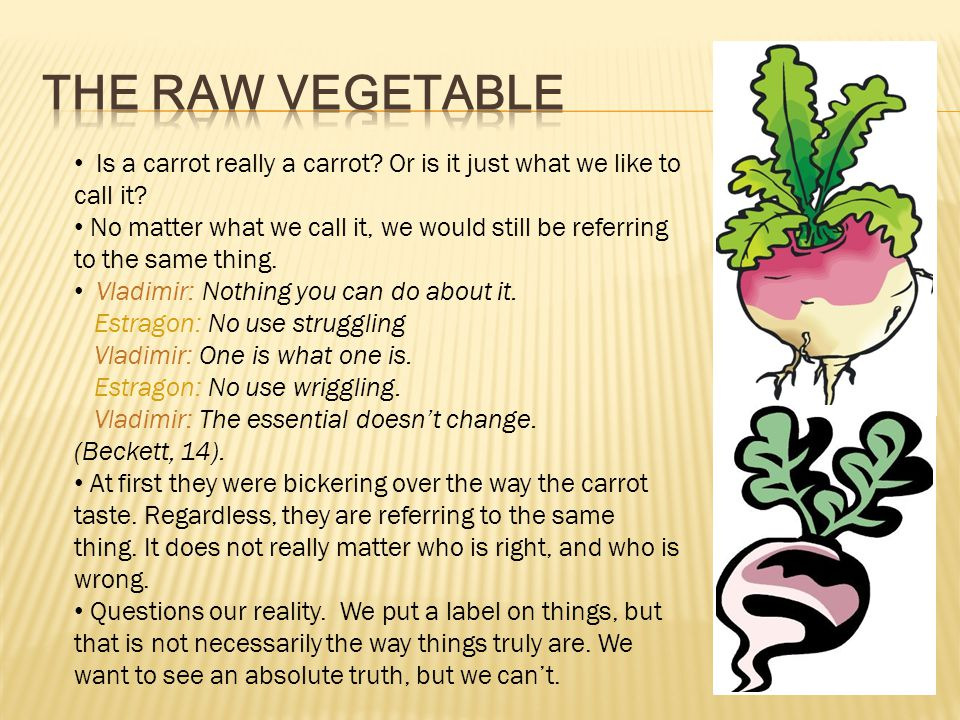 The Raw Vegetable Is a carrot really a carrot Or is it just what we like to call it