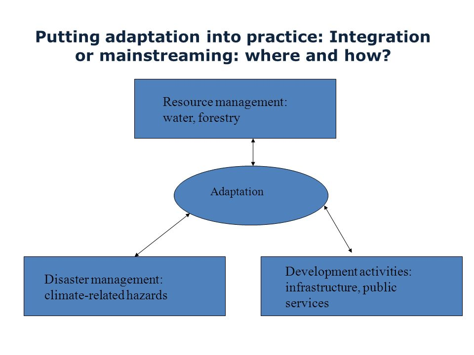 Putting adaptation into practice: Integration or mainstreaming: where and how