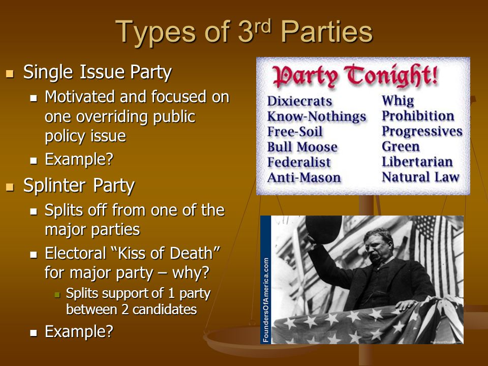 Types of 3rd Parties Single Issue Party Splinter Party