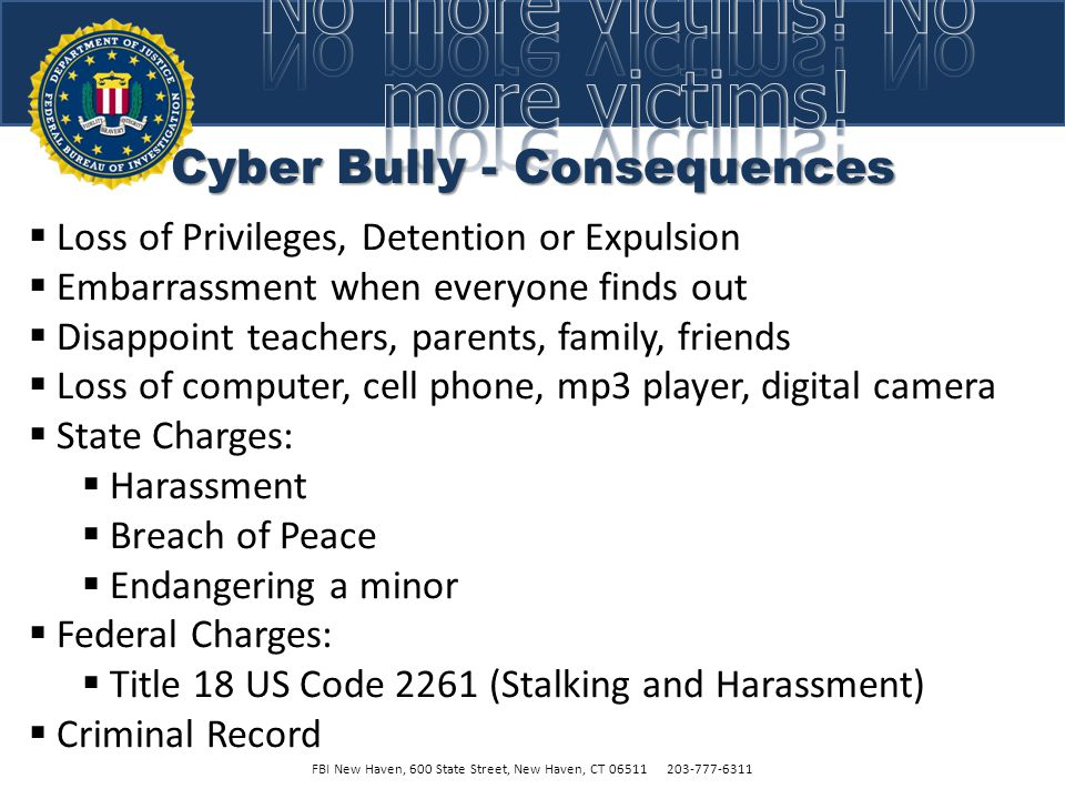Cyber Bully - Consequences