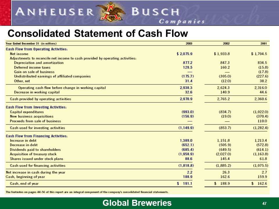Consolidated Statement of Cash Flow