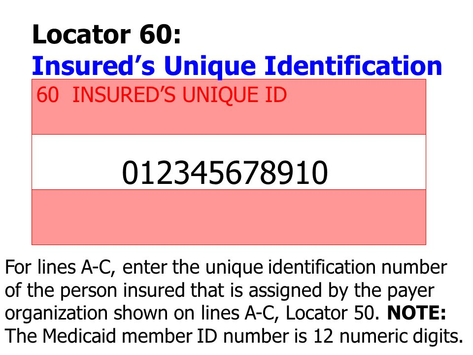 012345678910 Locator 60: Insured's Unique Identification