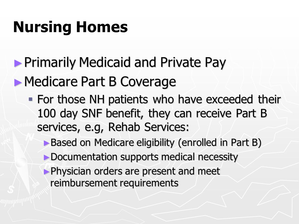 Nursing Homes Primarily Medicaid and Private Pay