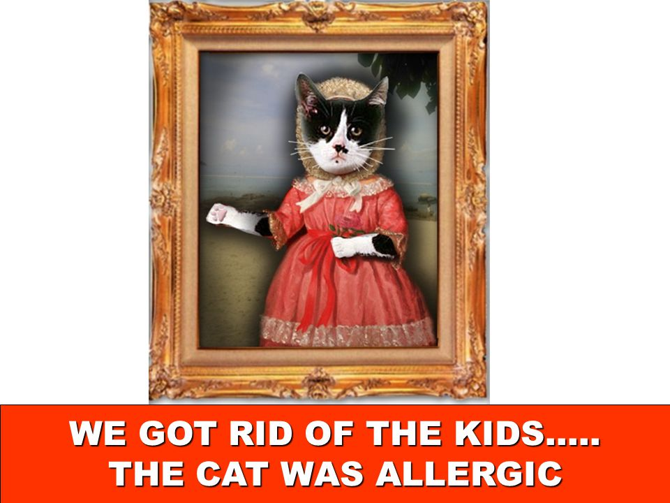 WE GOT RID OF THE KIDS….. THE CAT WAS ALLERGIC