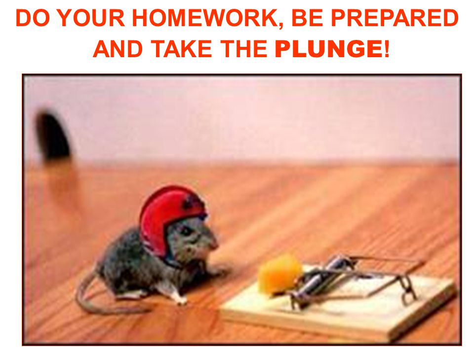 DO YOUR HOMEWORK, BE PREPARED AND TAKE THE PLUNGE!