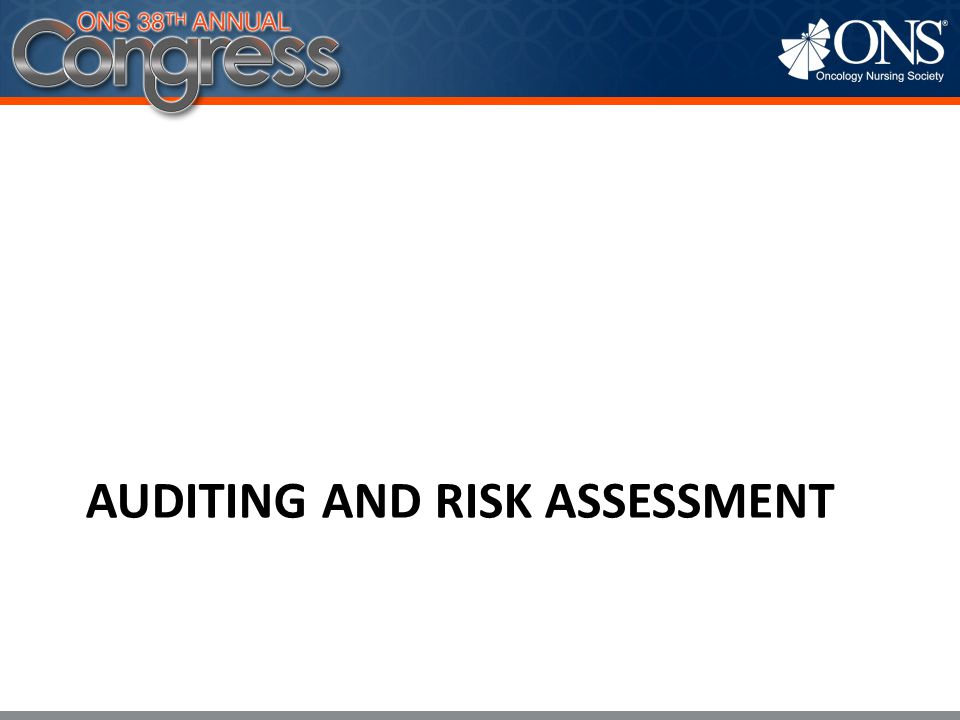 Auditing and Risk Assessment