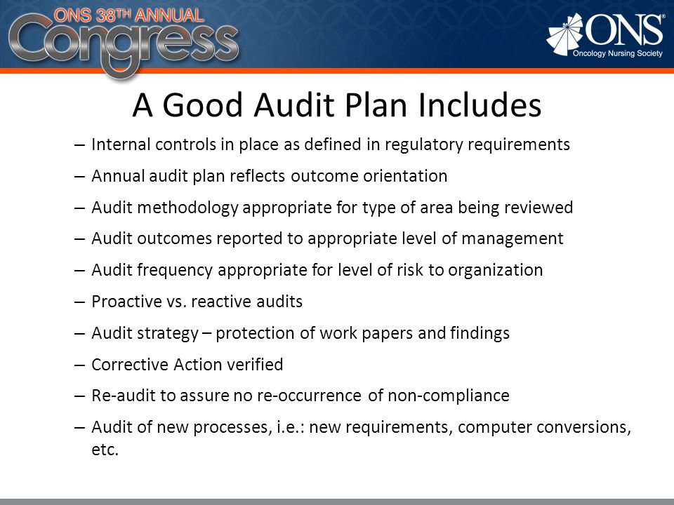A Good Audit Plan Includes