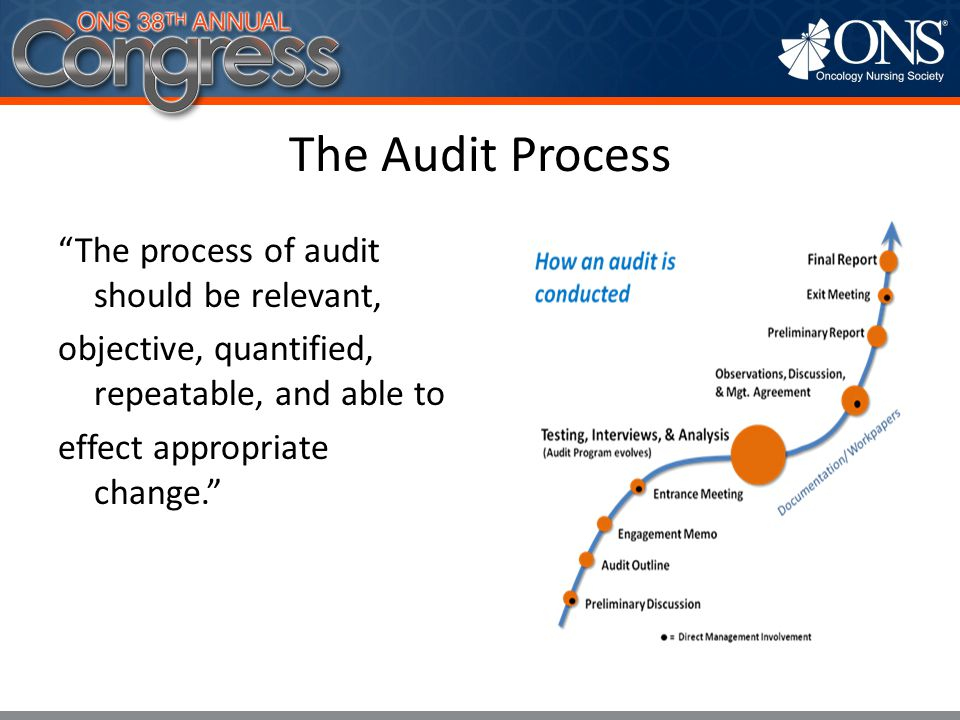 The Audit Process The process of audit should be relevant, objective, quantified, repeatable, and able to effect appropriate change.