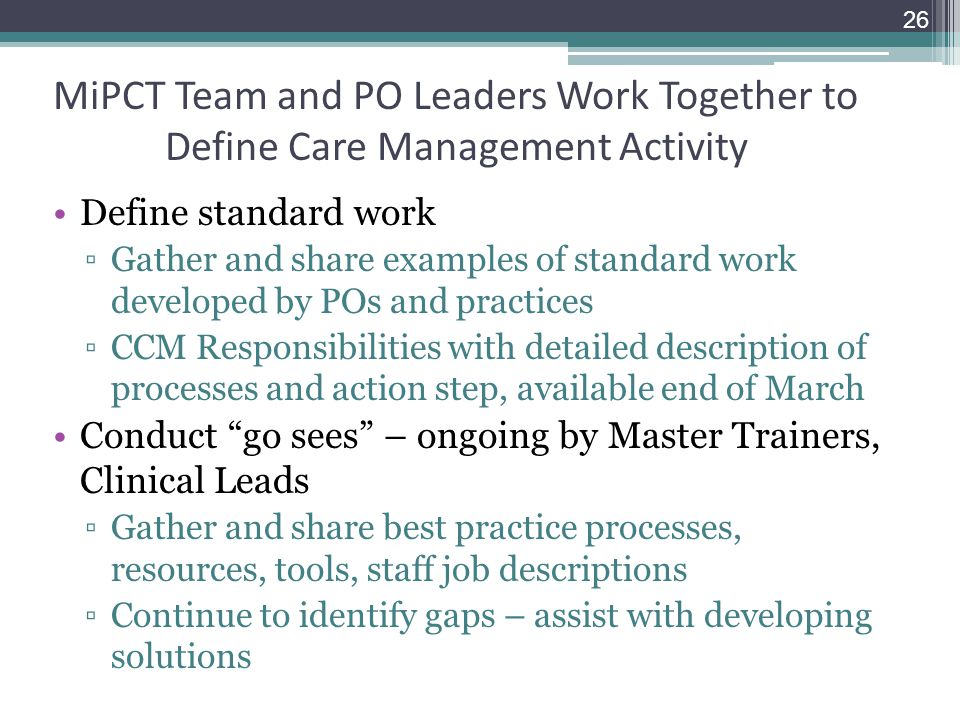 MiPCT Team and PO Leaders Work Together to Define Care Management Activity