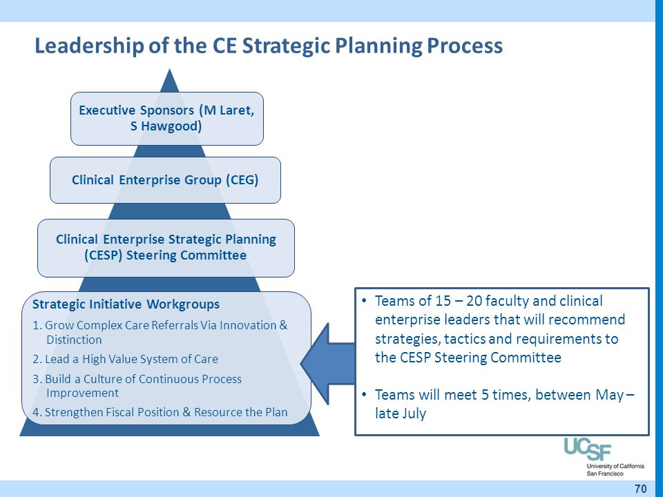 Leadership of the CE Strategic Planning Process