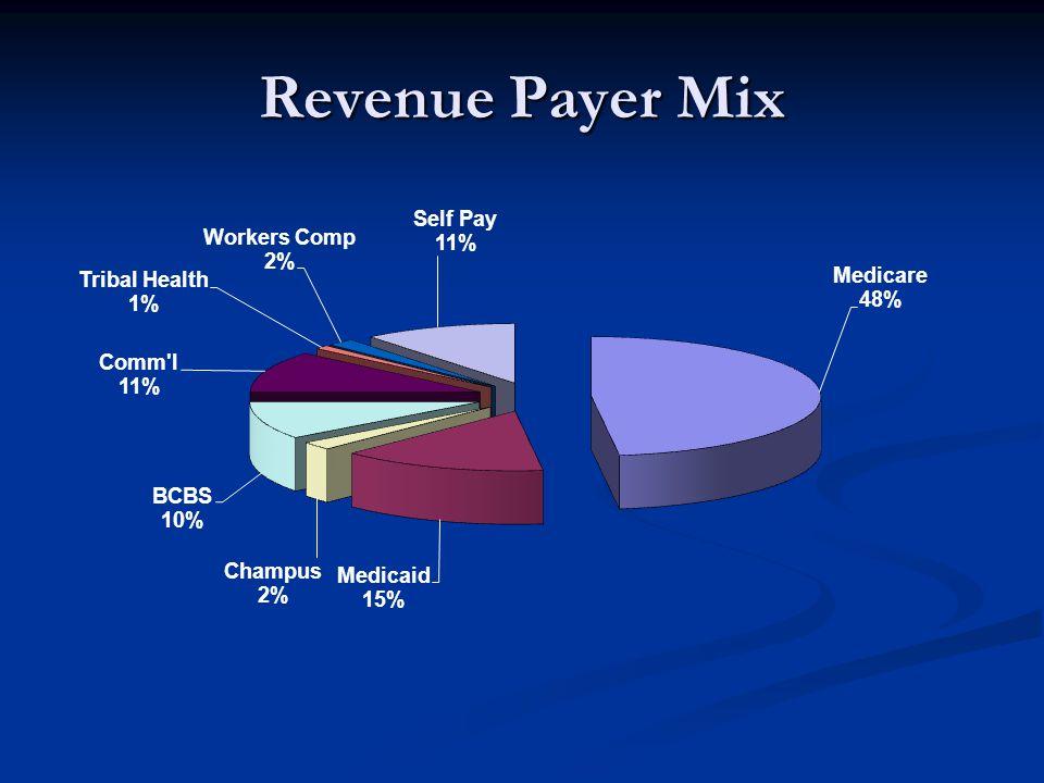 Revenue Payer Mix