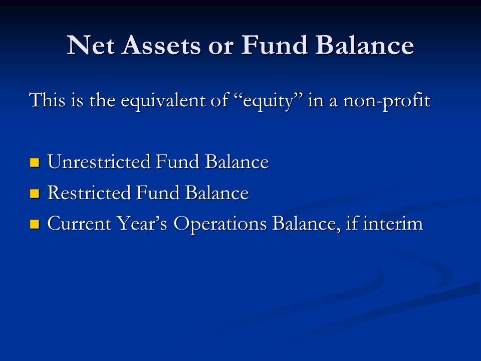 Net Assets or Fund Balance