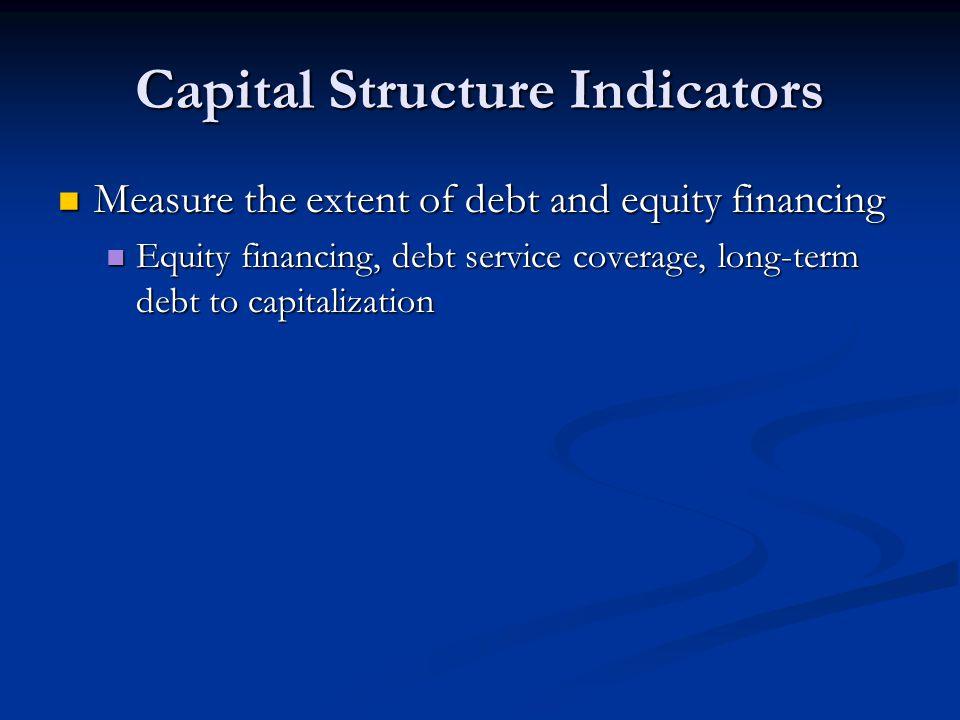 Capital Structure Indicators