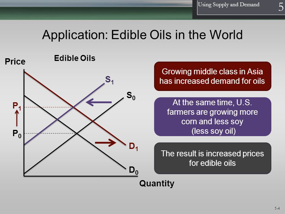 Application: Edible Oils in the World