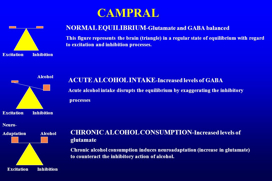 CAMPRAL ACUTE WITHDRAWAL AND POST-ACUTE WITHDRAWAL-Increased glutamate
