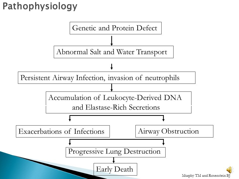 Pathophysiology Genetic and Protein Defect