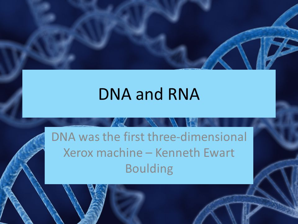 DNA and RNA DNA was the first three-dimensional Xerox machine – Kenneth Ewart Boulding