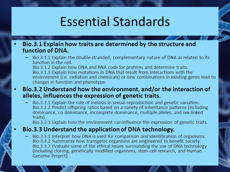 Essential Standards Bio.3.1 Explain how traits are determined by the structure and function of DNA.