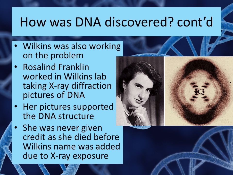 How was DNA discovered cont'd