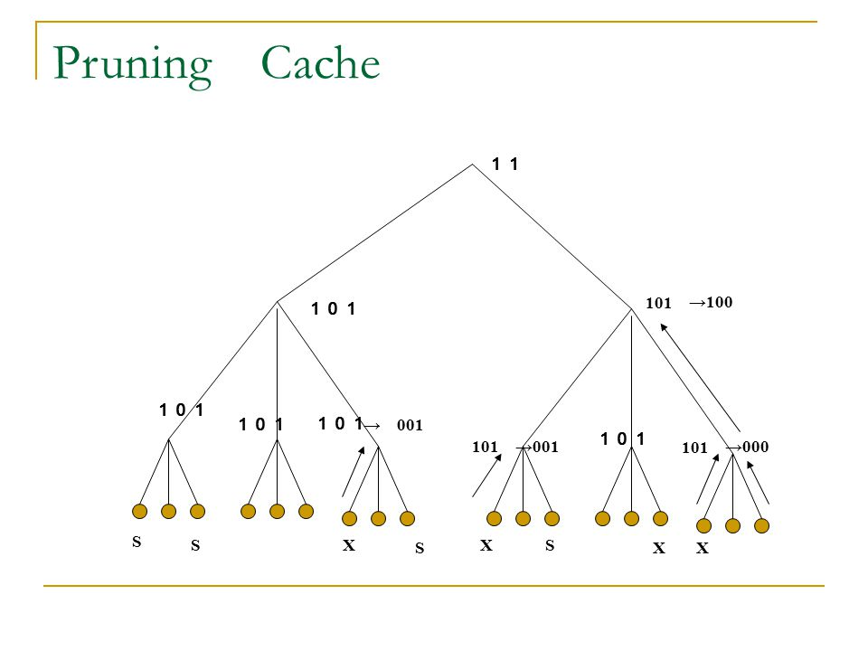 Pruning Cache 11 101 →100 101 101 101 101 →000 →001 → 001 101 101 101 S S X S X S X X