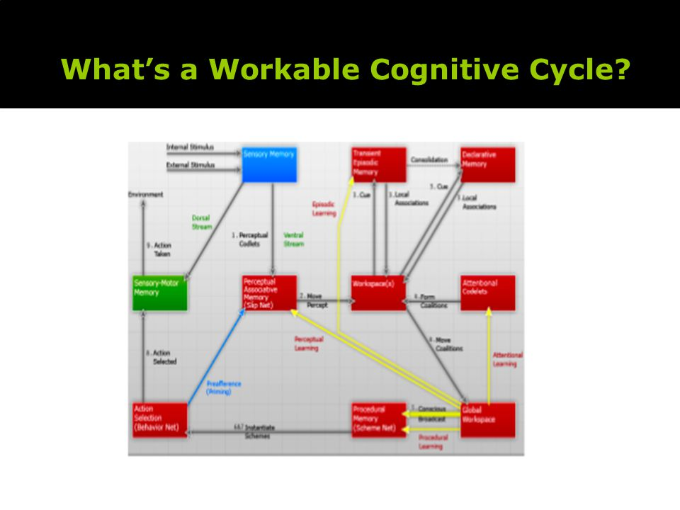 What's a Workable Cognitive Cycle
