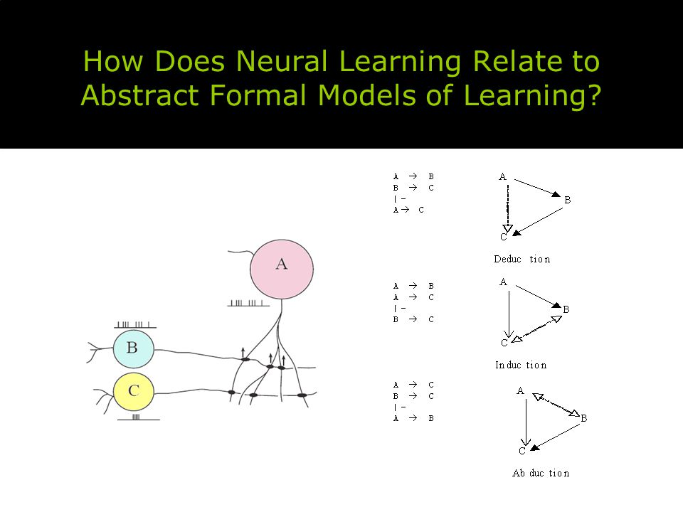 How Does Neural Learning Relate to Abstract Formal Models of Learning