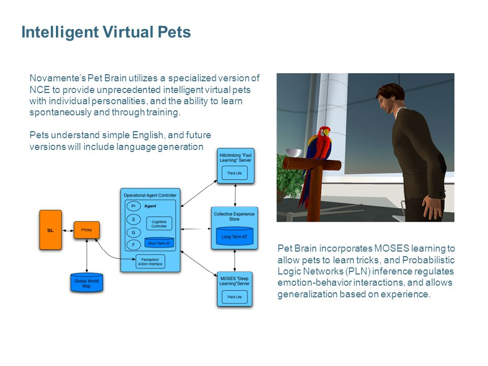 Intelligent Virtual Pets