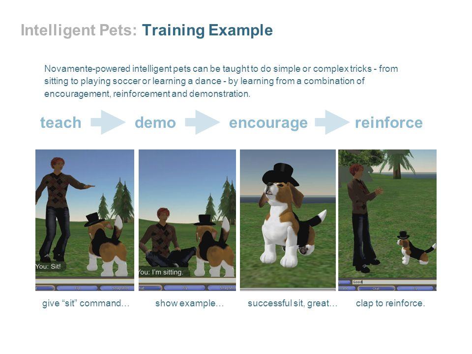 Intelligent Pets: Training Example
