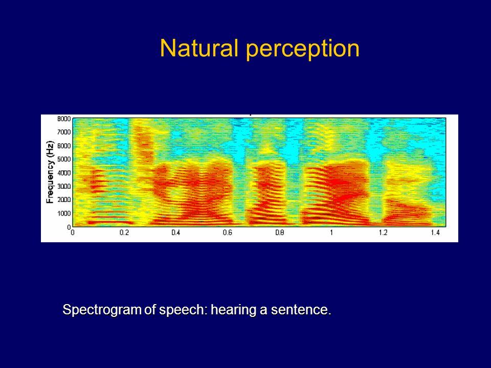 Natural perception Spectrogram of speech: hearing a sentence.