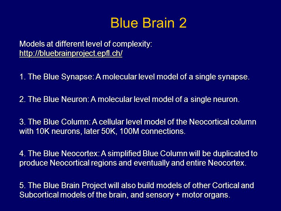Blue Brain 2 Models at different level of complexity: http://bluebrainproject.epfl.ch/