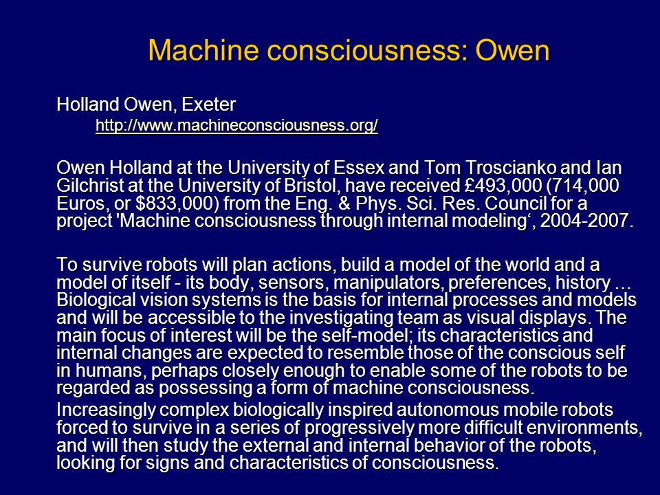 Machine consciousness: Owen