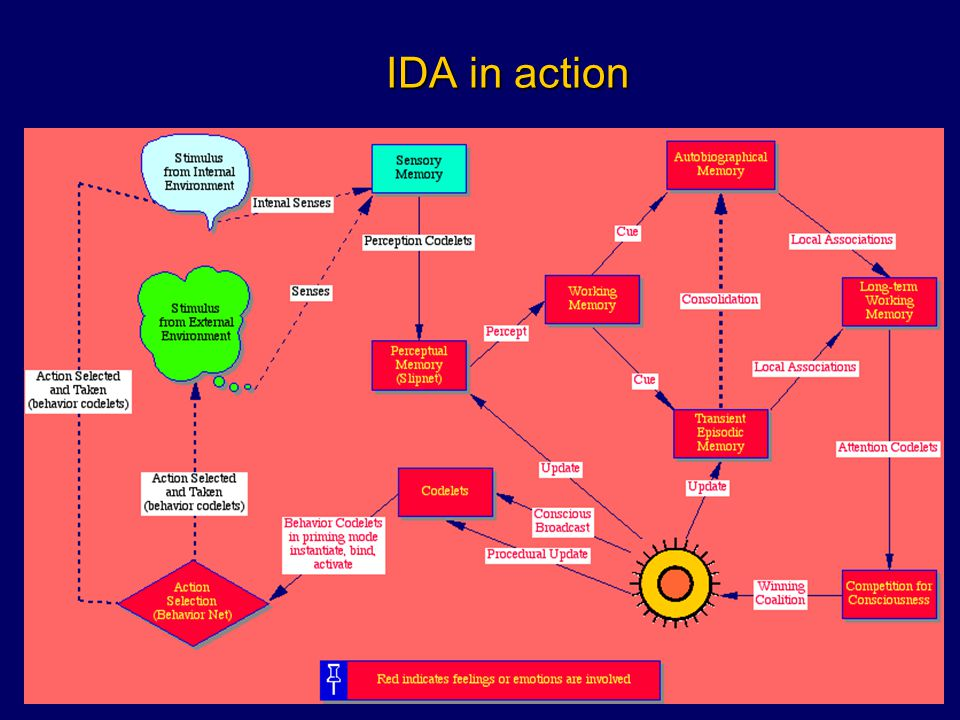 IDA in action