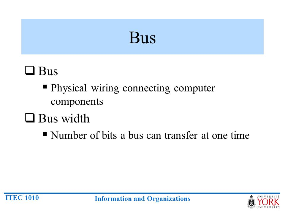 Bus Bus Bus width Physical wiring connecting computer components
