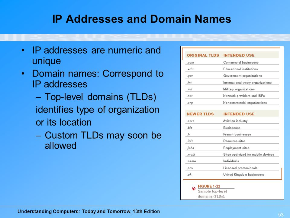 IP Addresses and Domain Names