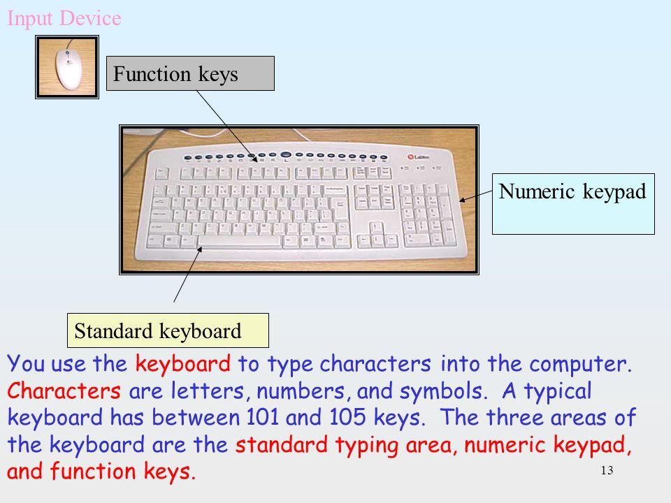 Input Device Function keys. Numeric keypad. Standard keyboard.