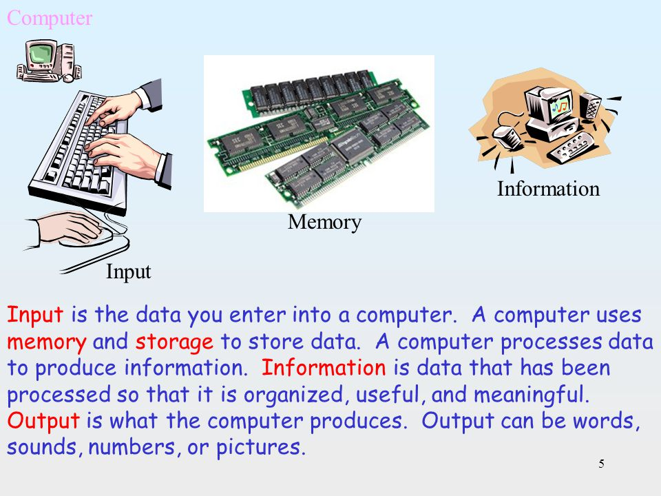 Computer Information. Memory. Input.