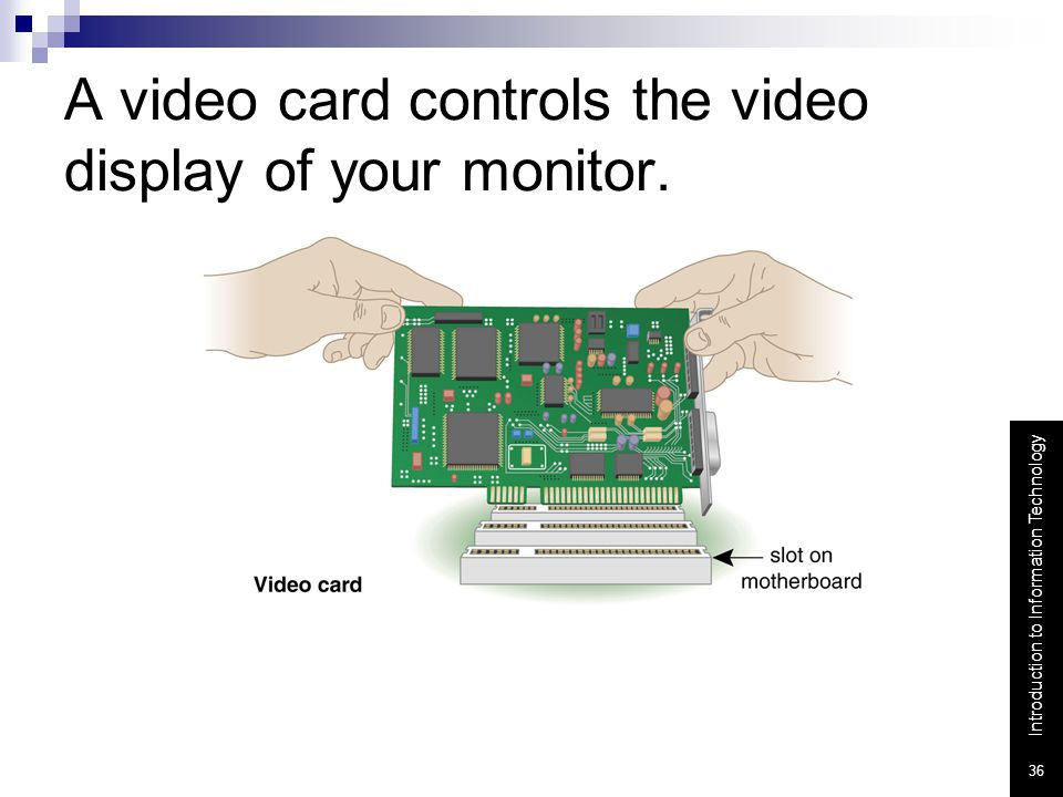 A video card controls the video display of your monitor.