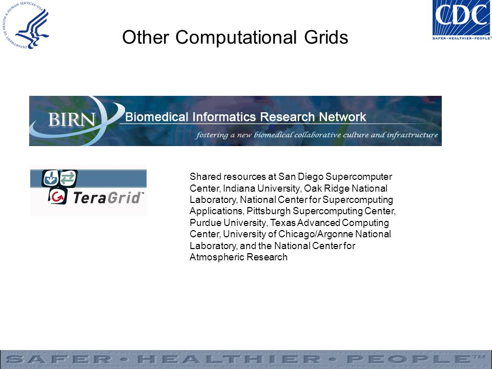 Other Computational Grids
