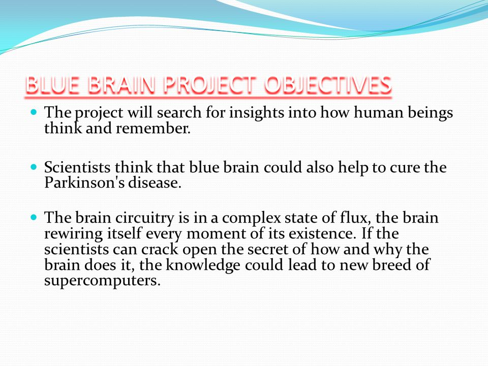BLUE BRAIN PROJECT OBJECTIVES