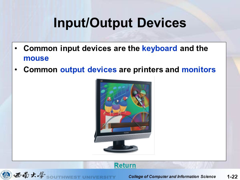 Input/Output Devices Common input devices are the keyboard and the mouse. Common output devices are printers and monitors.