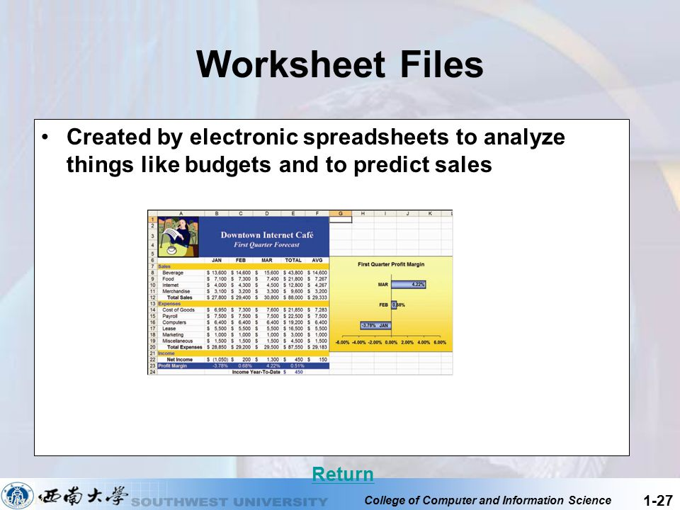 Worksheet Files Created by electronic spreadsheets to analyze things like budgets and to predict sales.