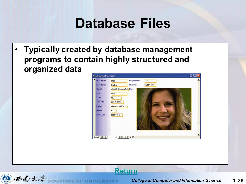 Database Files Typically created by database management programs to contain highly structured and organized data.