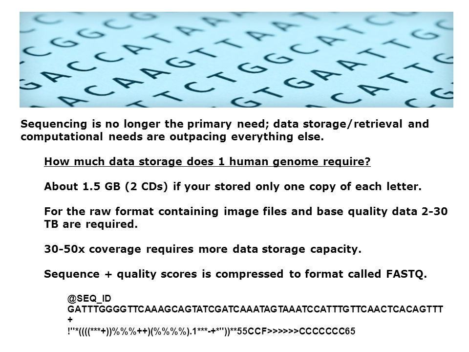 How much data storage does 1 human genome require