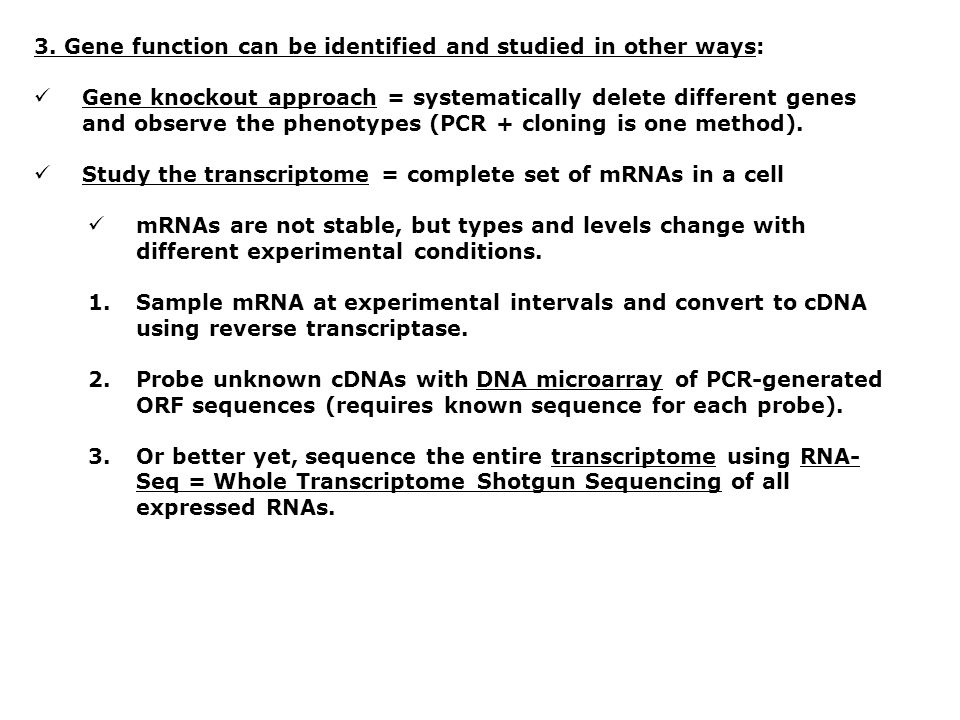 3. Gene function can be identified and studied in other ways: