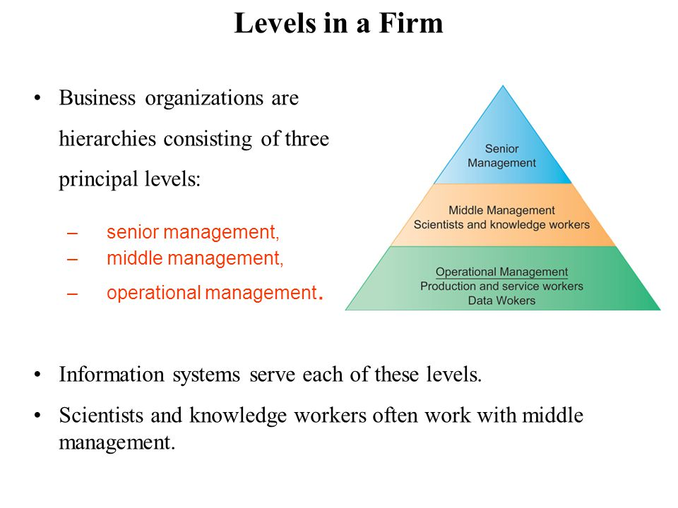 Levels in a Firm Business organizations are