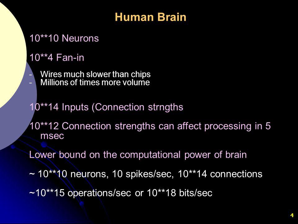 Human Brain 10**10 Neurons 10**4 Fan-in